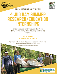 2020_JBWS-SummerResearchInternship.png