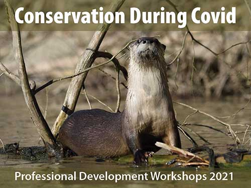 Conservation During Covid - Professional Development Workshops 2021