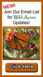 Click here to Join the Wild Acres Email list