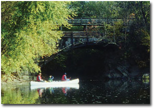 Kayakers paddling