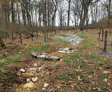 Stream restoration project at Irvine Nature Center. Cascades were  installed to slow the stream flow along a steep portion.