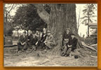 Photo of early Forestry Board Meeting - members are sitting beneath a large tree