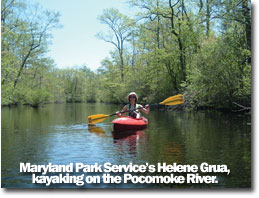 a photo of Maryland Park Service's Helene Grua, kayaking on the Pocomoke River.