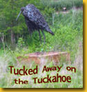 Statue of Blue Heron reads: Tucked Away on the Tuckahoe