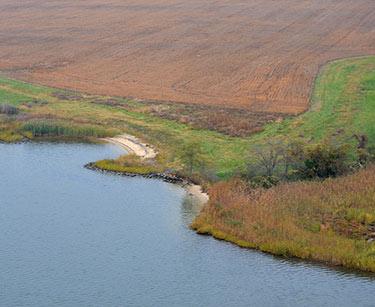 Help Minimize Shore Erosion