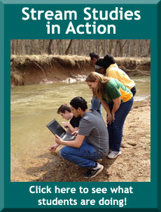 Stream studies in action - click to see what students are doing