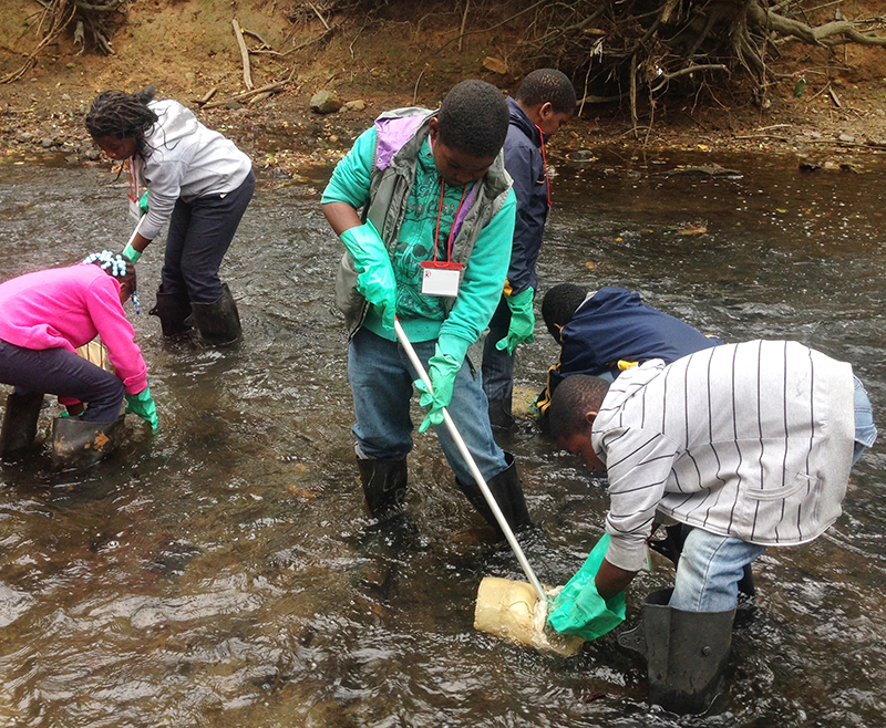 A group of children learning what microorganisms live in the stream.
