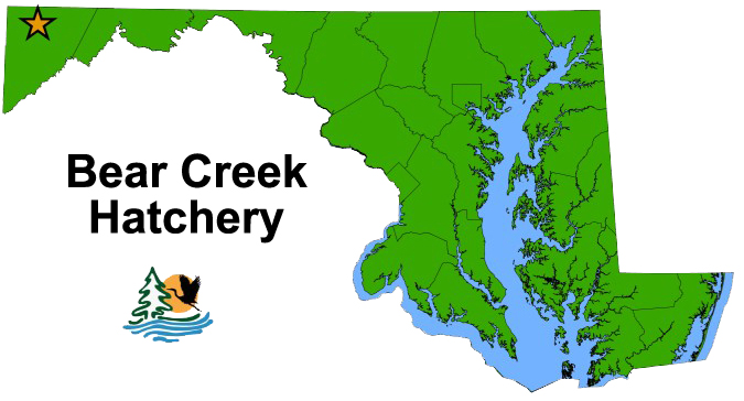 Bear Creek Map