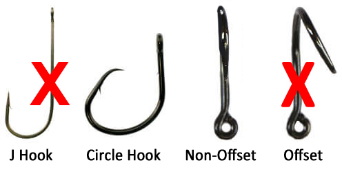 circle hooks