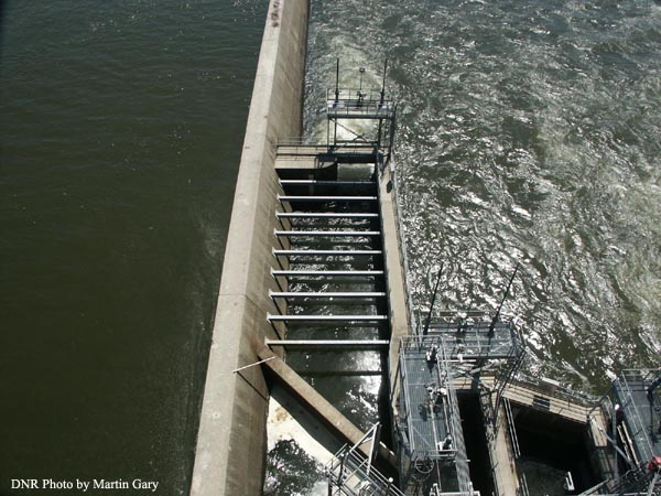 Fish Passage East Lift at Conowingo Dam