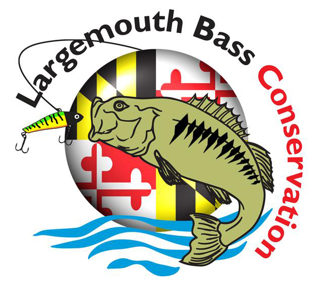 Largemouth Bass Conservation