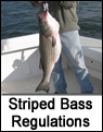Striped Bass Seasonal Maps
