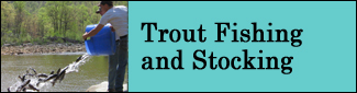 Trout Stocking Photo