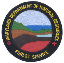 Contemporary left and right shoulder emblem of the Forest Service - worn by foresters & rangers involved in cooperative forestry (1991 - present)