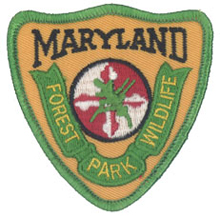 Hat patch, contemporary with left shoulder emblems of the Forest, Park & Wildlife Service (1984-1991)