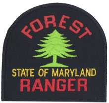 Contemporary left and right shoulder emblem of the Forest Service (1991 - present)