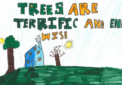 3rd Place Overall 2017 Arbor Day Poster Contest