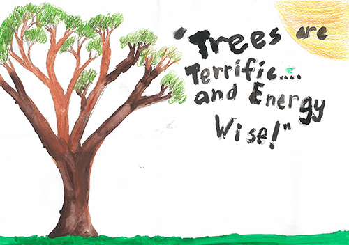 2017 Arbor Day Poster Contest 1st Place in Allegany County: Matthew Topper