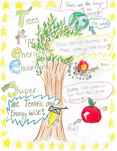 1st Place 2017 Arbor Day Poster Contest in Anne Arundel County: Shaeleigh Fraser