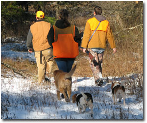 Hunting on Green Ridge State Forest