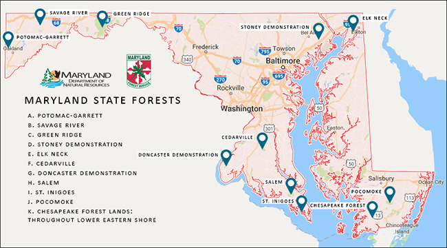 Maryland State Forests Location Map