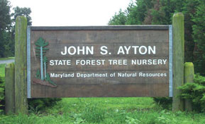 Picture of the Nursery Sign.
