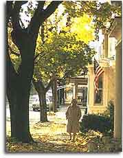 A woman walking down a sidewalk shaded by old majestic trees