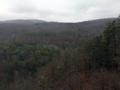 Picture of Green Ridge State Forest.