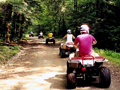 People riding off-road vehicles on a trail.