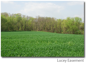 Photo of Lucey Easement - big green open field