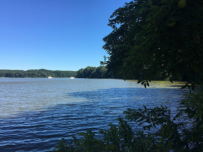 Scenic View of river from Chapel Point State Park