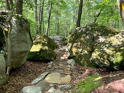 Photo of trail in Deep Creek Lake State Park