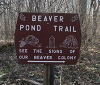 Beaver Pond Trail sign