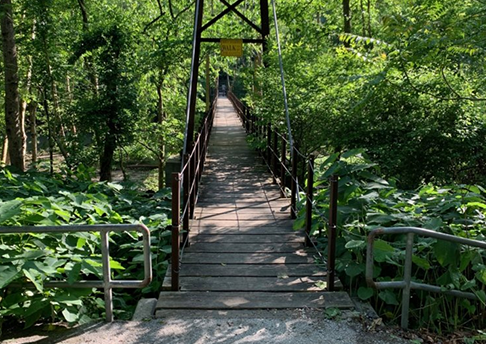 Grist Mill Trail Bridge in the summer.