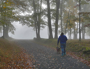 Hiker with dog on Herrington Manor State Park Trail