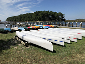Canoe and Kayak rentals in Janes Island State Park