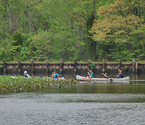 Canoeing at Martinak State Park
