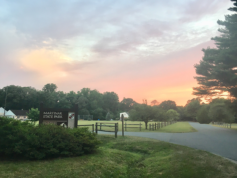 Martinak State Park entrance sign at sunset with a beautiful colored sky.