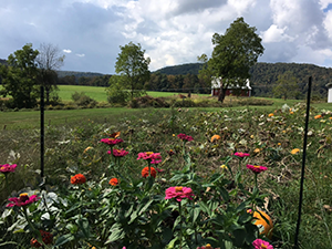 Vegetable and flower garden at Sang Run State Park