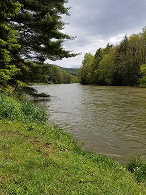 Youghiogheny Scenic and Wild River, photo by Roy Musselwhite