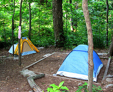 Campsite with two tents