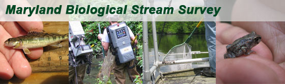 Maryland Biological Stream Survey Cover