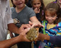 Kids touching a reptile.