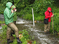 image of scientists conducting a stream study