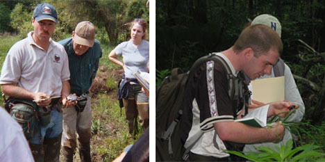 Left: Bog Turtle surveys by P. Becker; Right:  Botany Class by C. Frye