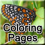 Coloring Pages Icon links to pdf file
