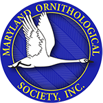 Maryland Ornithological Society logo
