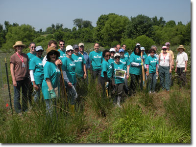 Volunteers gather to help plant white turtlehead at a restoration site in Montgomery County (Photo by Denise Gibbs)