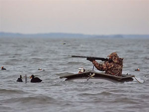 Hunting ducks offshore