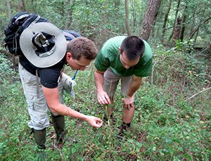 Wildlife biologists in the field